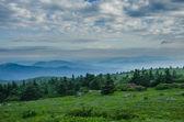 Foggy Mountain as seen from Grassy Ridge — Stock Photo