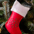 White and Red Stocking Ornament — Stock Photo #57026045