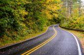 Winding Road in Fall — Foto de Stock