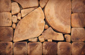 Wood texture of cut tree trunk — Stock Photo