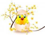 Small chicken in shell egg with laburnum — Stock Photo