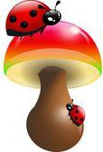 Ladybugs on toadstool — Stock Photo