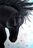 Black horse painting — Stock Photo