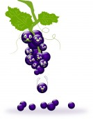 Funny grapes — Stock Photo