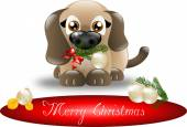 Merry Christmas puppy — Stock Photo