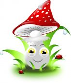 Toadstool in grass — Stock Photo