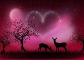 Noite de amor — Fotografia Stock