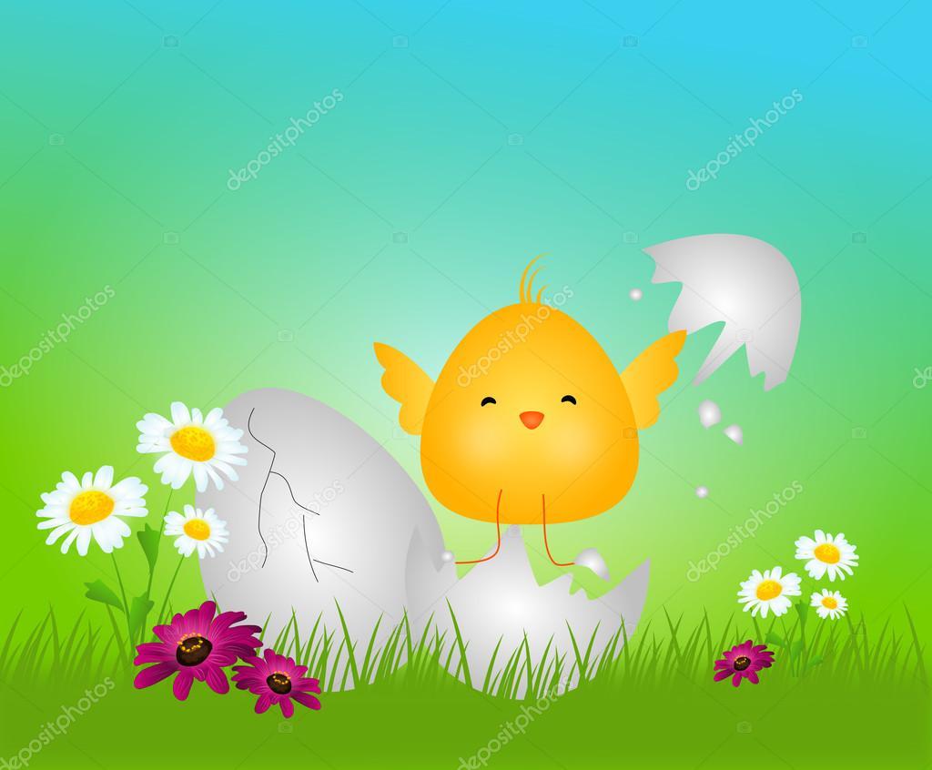 复活节小可爱鸡 — 图库照片08sidliks#95101846