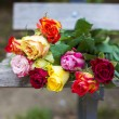 Roses on a bench — Stock Photo #57316205