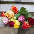 Roses on a bench — Stock Photo #57316261