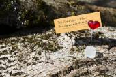 """German quote """"ich liebe das Leben das Leben liebt mich"""" (i love — Stock Photo"""