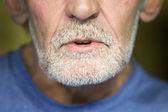 Close-up of man's gray beard — Stok fotoğraf