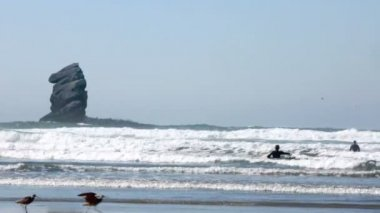 Two surfer at Morro Bay, California in the water — Stock Video