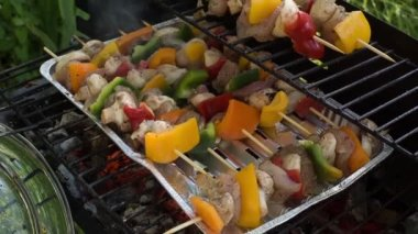 Tasty skewers on garden grill, close-up. — Stock Video