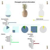 Pineapple nutrient information — Stock Vector
