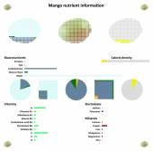 Mango Nutrient information — Stock Vector