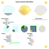 Lemon nutrient information — Stock Vector