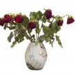 Old red roses in vase isolated on white — Stock Photo #65486803