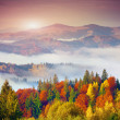Autumn morning in the Carpathian mountains — Stockfoto #53808023