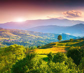 Summer landscape in the mountain village — Stock Photo