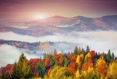 Autumn morning in the Carpathian mountains — Stock Photo