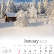 Calendar 2015 . January. — Stock Photo #56309217