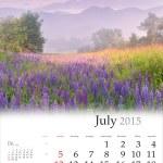 Calendar 2015. July — Foto Stock #56309591