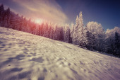 Winter  in the mountains. — Stock Photo
