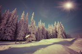 Snowfall in the mountain forest — Stock Photo