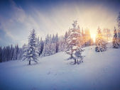 Winter sunrise in the mountains. — Stockfoto