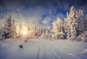 Sunny winter morning — Stock Photo