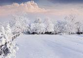 Winter morning in the Carpathian village.  — Stock Photo