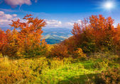 Autumn  in the mountains — Стоковое фото