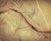 Natural Wood Texture — Stock Photo