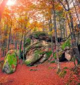 Huge rock in the autumn forest.  — Stock Photo
