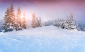Winter sunrise in the mountain forest — Stock Photo