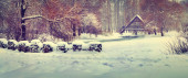 Panorama of the first snowfall in the city park. — Stock Photo