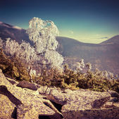 山の中の最初の霜. — ストック写真