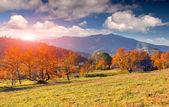 Autumn in the mountain village. — Stock Photo