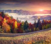Colorful autumn sunrise in the mountains. — Stock Photo