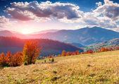 Autumn  in the mountains. — Stock Photo