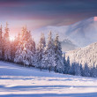 Sunrise in the snowy mountains — Zdjęcie stockowe #56616501