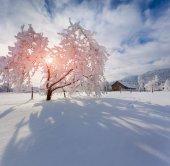 Winter in the Carpathian village. — Stock Photo