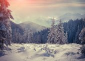 Foggy winter sunrise in the mountains.  — Stock Photo