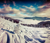 Winter  in the mountains. — Stok fotoğraf