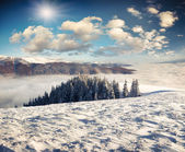 Landscape in the winter mountains — Stock Photo