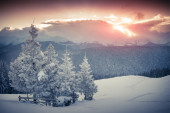 Hoarfrost and snow in mountains. — Stock Photo