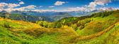 Panorama of the alpine meadows. — Stock Photo