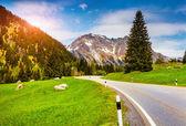 Morning in the Switzerland Alps. — Stock Photo