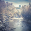 Winter landscape in the city park — Stock Photo #57983615
